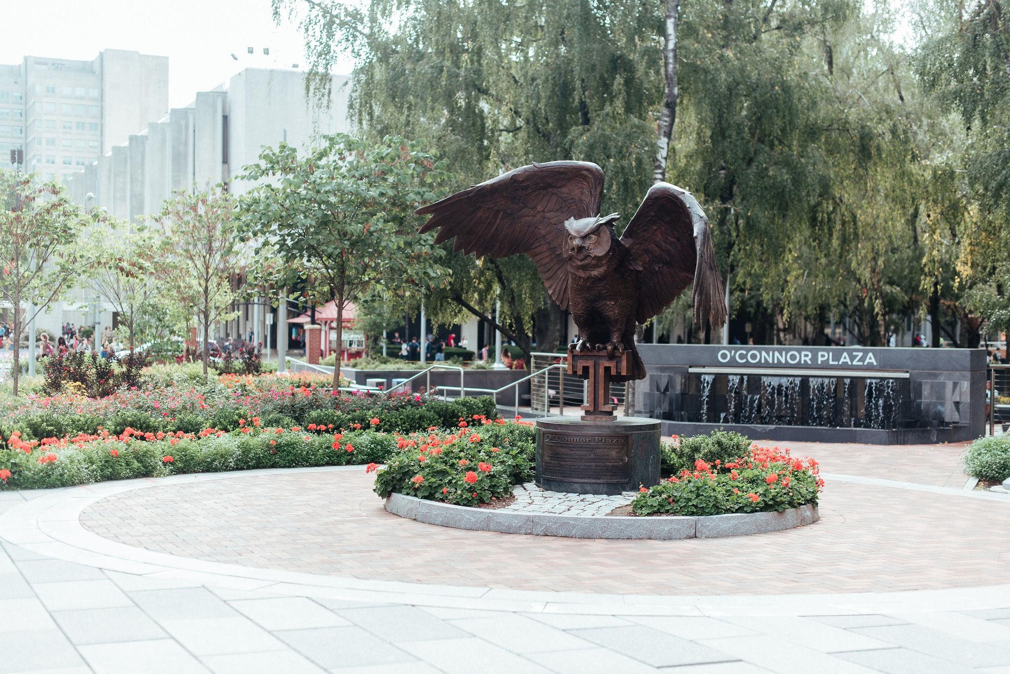 owl statue in founders garden