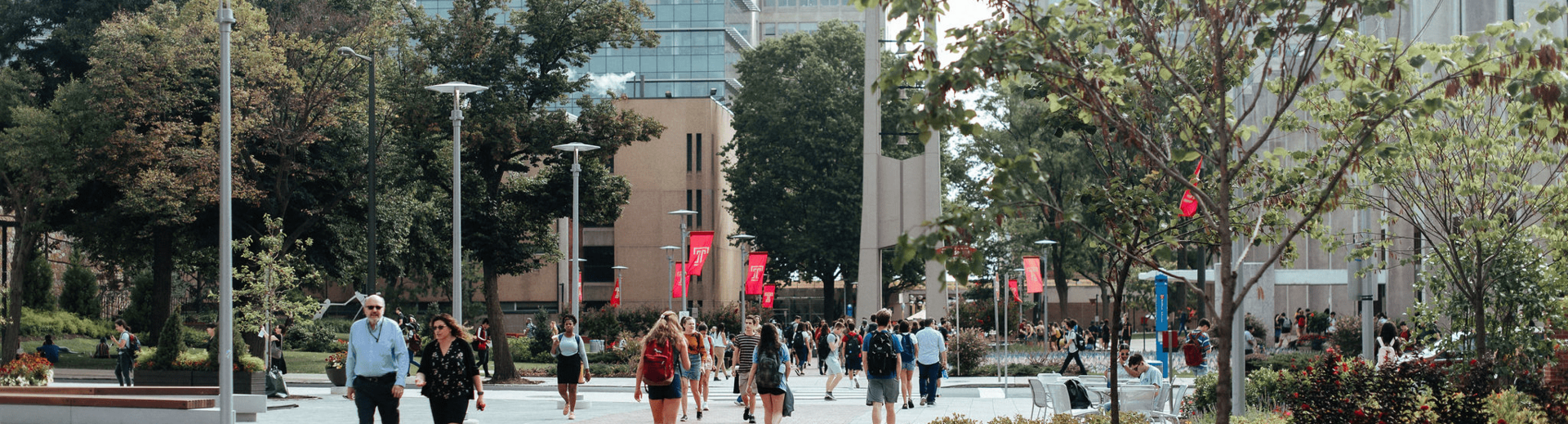 photo of campus walk with bell tower