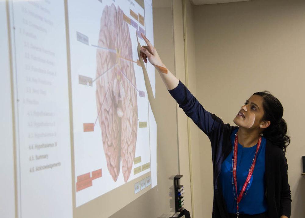 image of professor teaching neuroscience