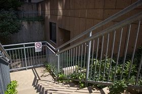 image of Weiss Hall 13th St entrance stairs